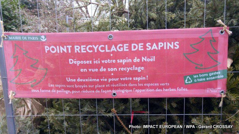 Ne jetez pas vos sapins, recyclez les !