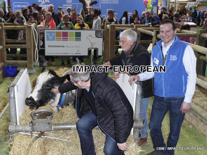 """La vache """"Imminence"""", égérie du 56ème Salon International de l'Agriculture"""